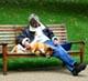 De hond en zijn baasje