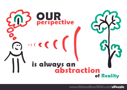 Our perspective is always an abstraction of reality